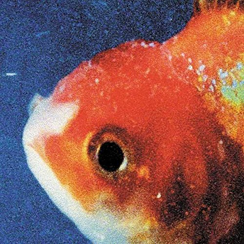 Big Fish Theory